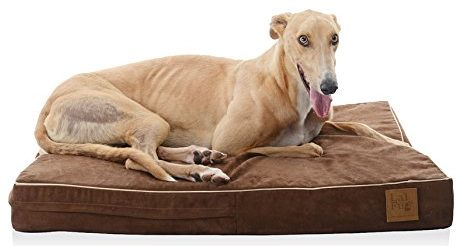 LaiFug 45DHI Premium Memory Foam Orthopedic Extra Large Pet/Dog Bed