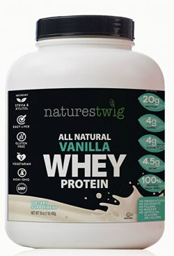 NaturesTwig All Natural Vanilla Whey Protein