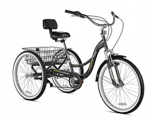 adult-tricycle