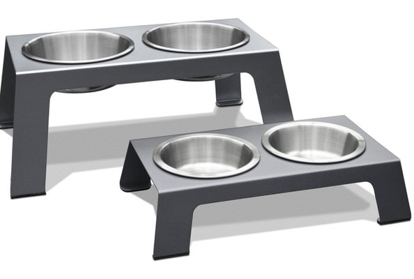 Top 10 Best Elevated Dog Bowls in 2021