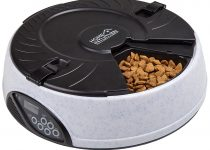 Home Intuition Automatic Pet Feeder