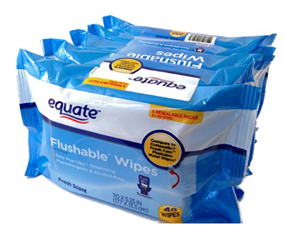 Equate Flushable Wipes 5-pack of 48 Ea