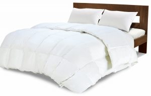 Equinox International White Goosedown Comforter