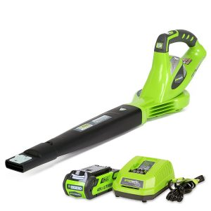 GreenWorks 24252 GMAX Variable Electric Blower
