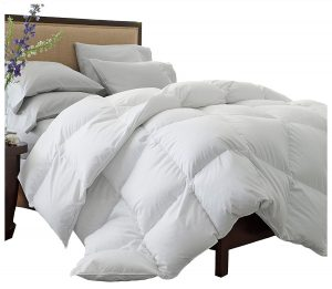 Superior Solid White down Comforter