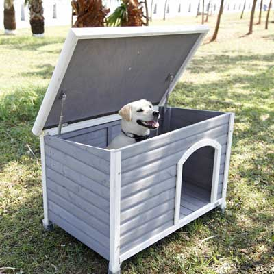 5. Petsfit Dog House, Dog House Outdoor