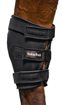 Back on Track 2-Piece Therapeutic Horse Hock Brace