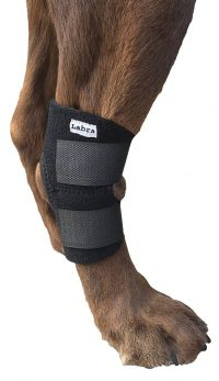 Dog Canine Rear Leg Hock Joint Wrap Protects