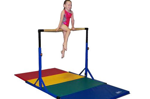 Gymnastics Pro-Deluxe High Bar