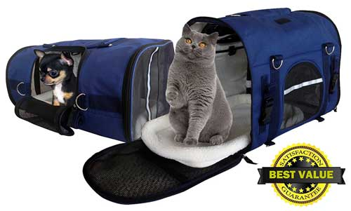 Best Pet Carrier Backpacks