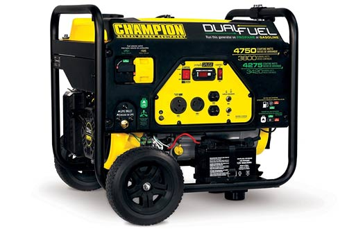 Champion Power Equipment Watt Dual Fuel RV Ready Portable Generator with Electric Start