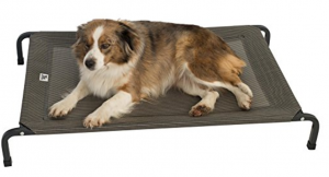 elevated-dog-bed