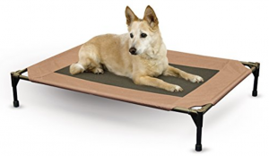 dog-bed-reviews