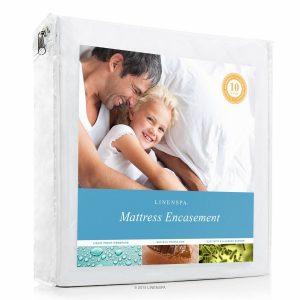 Bed Bug Proof Breathable Mattress Protector