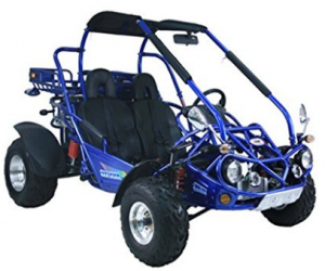 New XRX Go Kart 300cc Trail Master Brand - Off Road Go-Kart