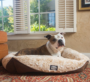 simmons-pet-bed