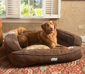 best-soft-dog-bed