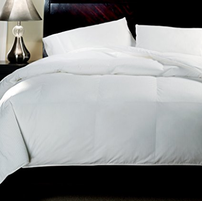 Luxury Eddie Bauer Multi-Season 600 Fill Power White Down Comforter