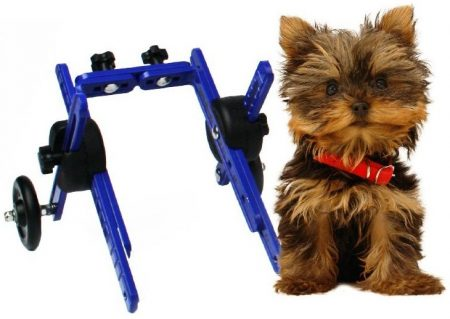 Walkin'-Wheels-dog-wheelchairs