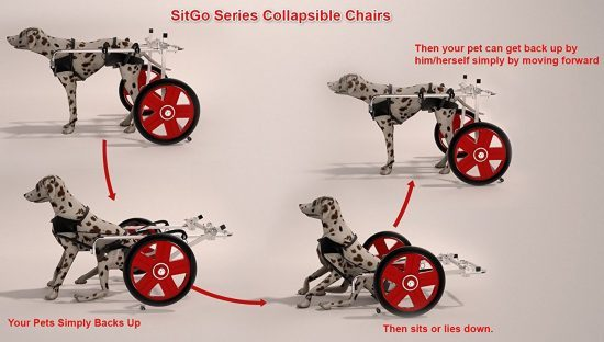 SitGo-dog-wheelchairs