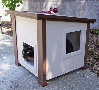 Outdoor Feral Cat House
