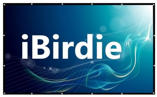 iBirdie-outdoor-projector-screens