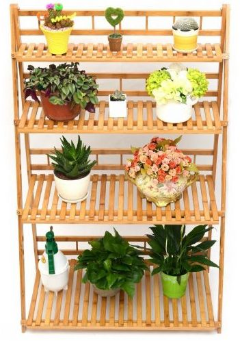 Plant Flower Stand Plant