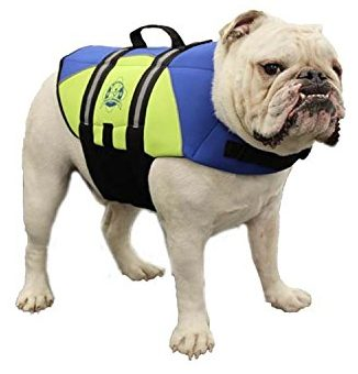 Paws Aboard BY1400 Neoprene Doggy Life Jacket, Medium